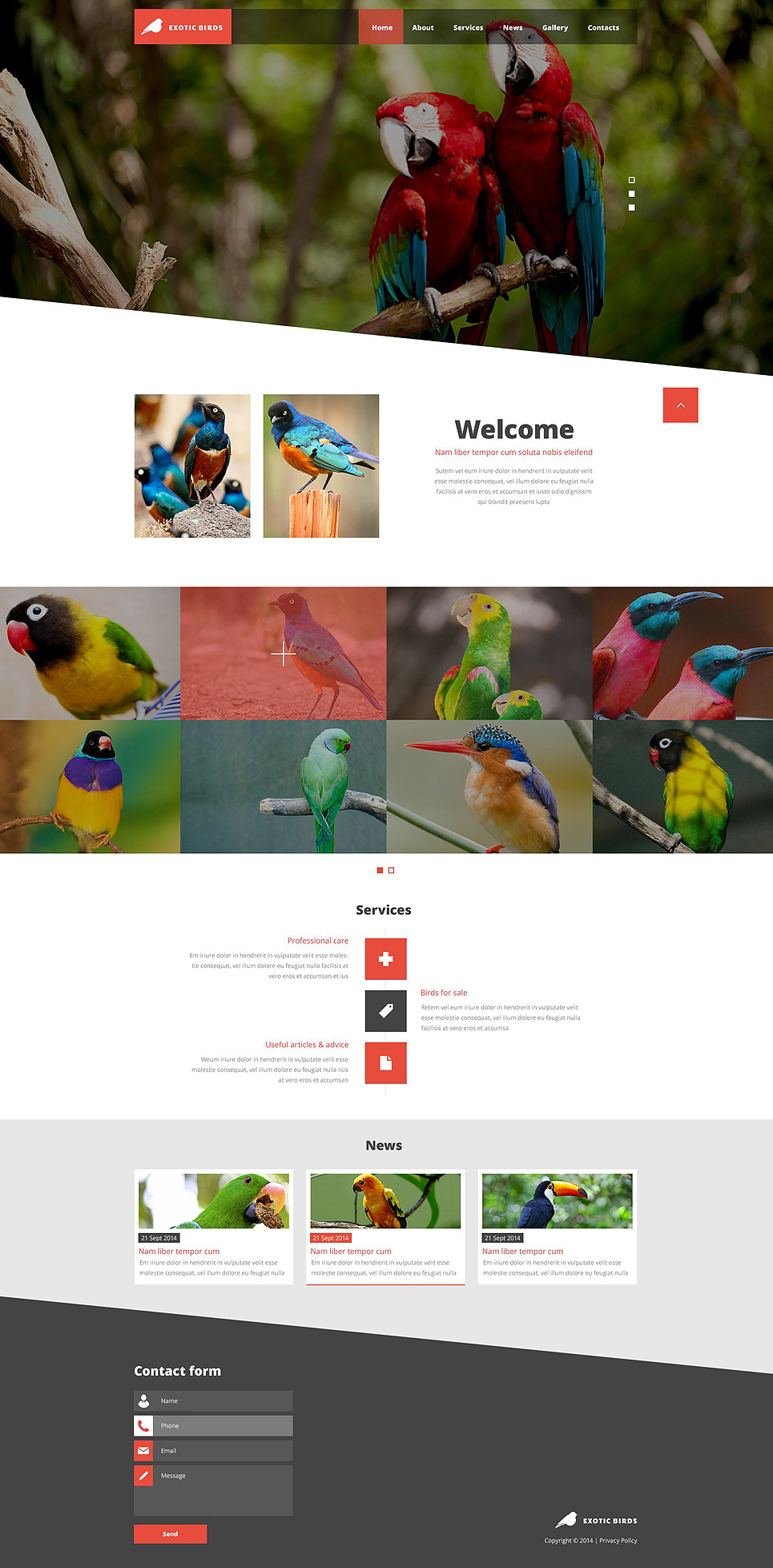 Exotic Birds Website Template New Screenshots BIG