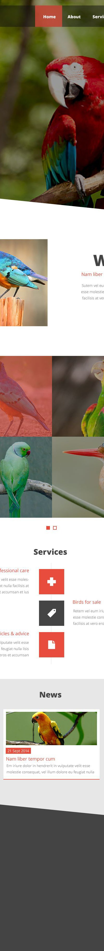 Exotic Birds Website Template