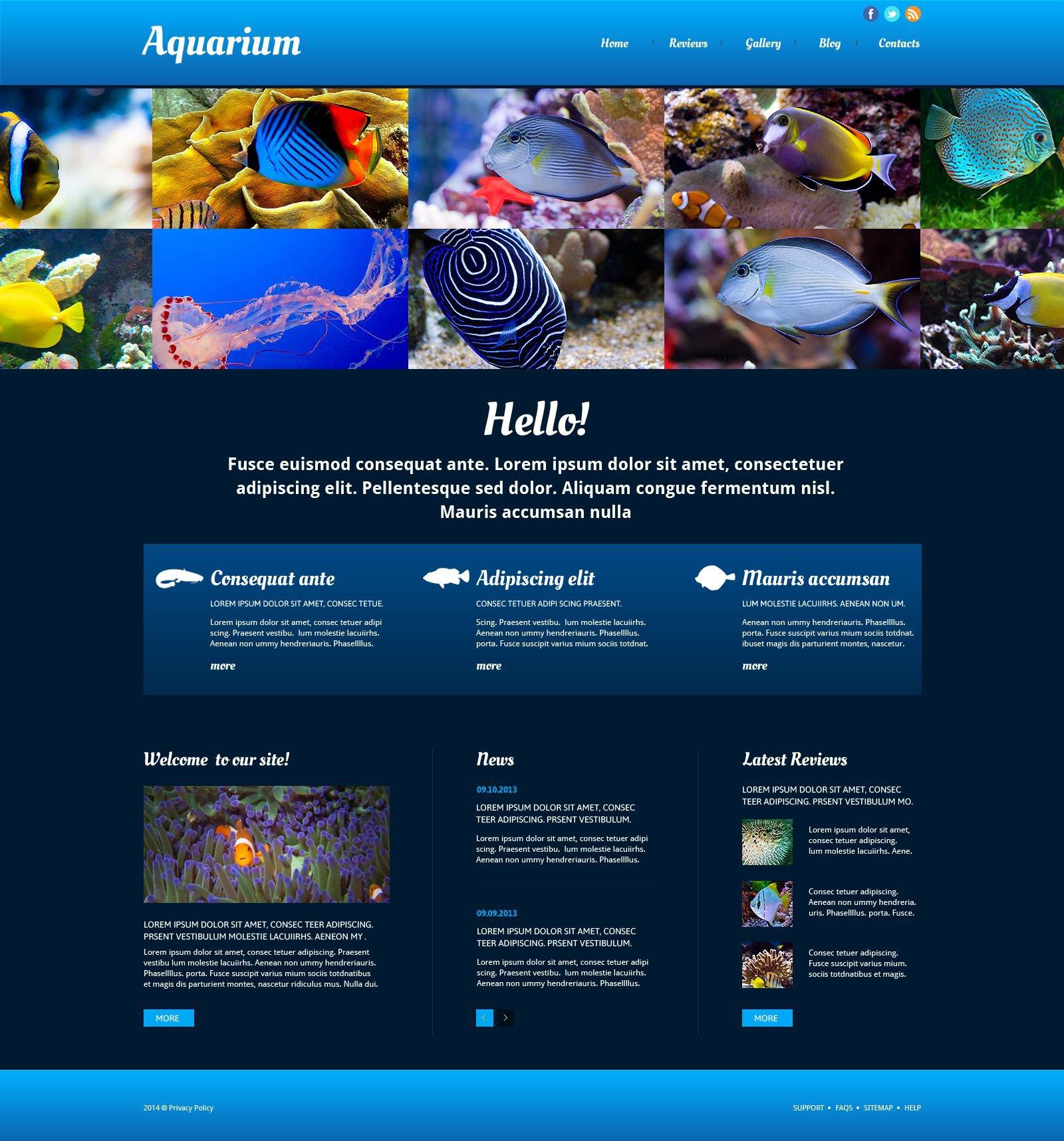 Fish Responsive Website Template - screenshot