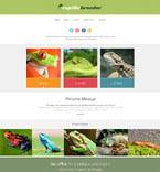 Animals & Pets Website  Template 52600
