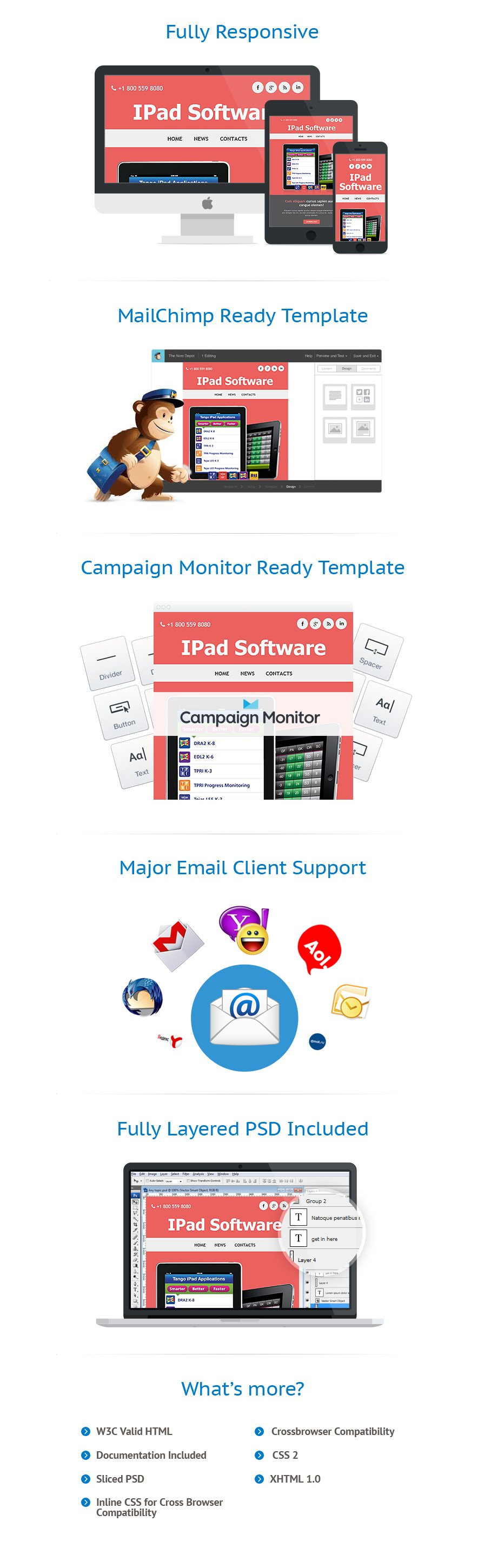Software Company Responsive Newsletter Template #52643