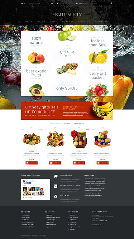 ADOBE Photoshop Template 52699 Home Page Screenshot