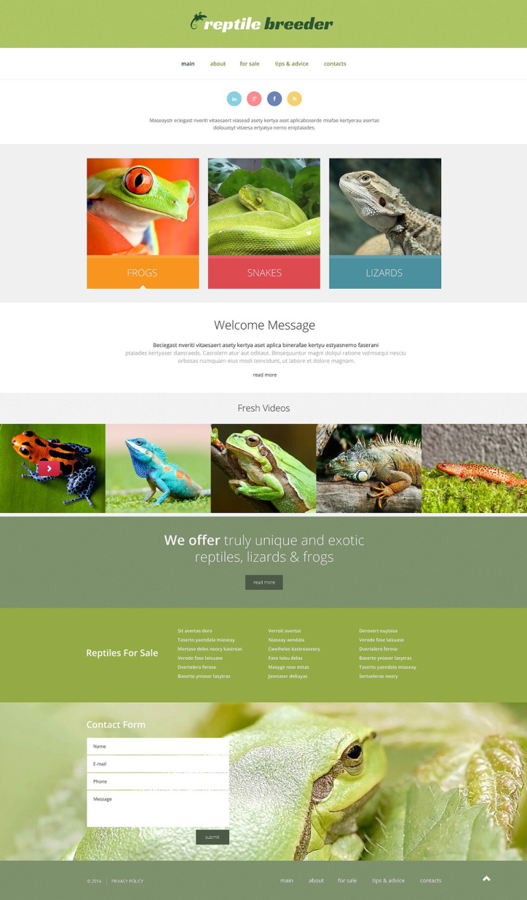 Reptile Responsive Website Template New Screenshots BIG