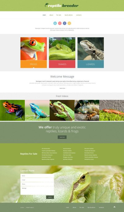 Reptile Responsive Website Template