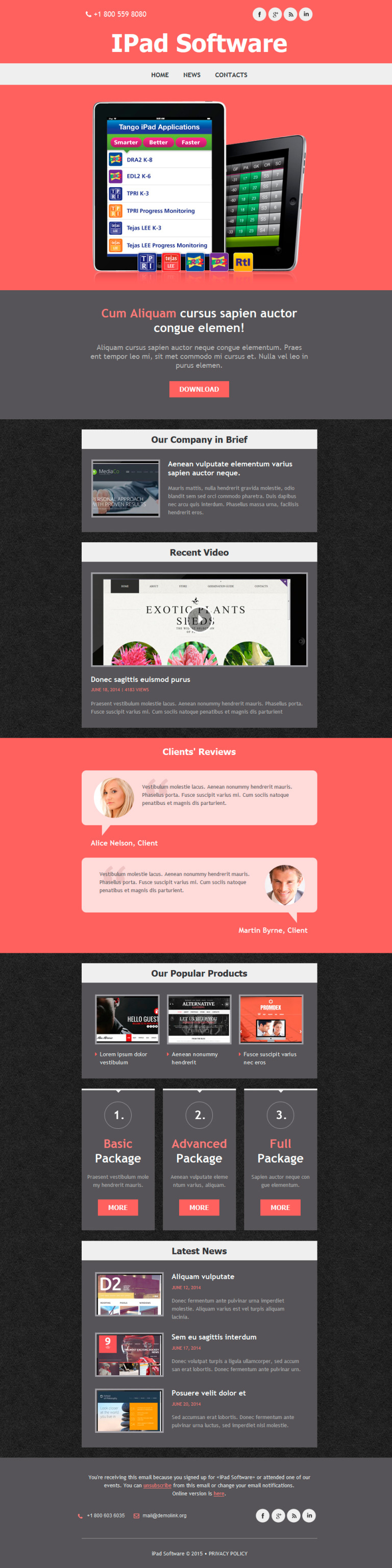 Software Company Responsive Newsletter Template New Screenshots BIG