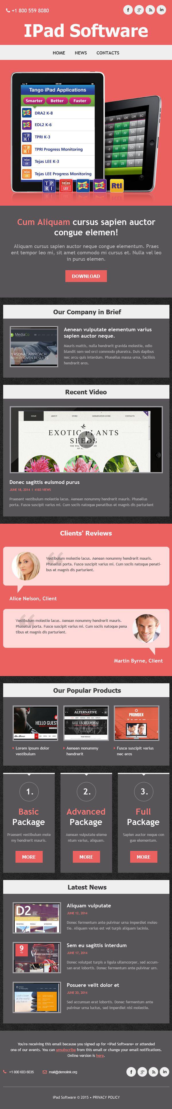 Template de Newsletter Flexível para Sites de Empresa de Software №52643 - captura de tela