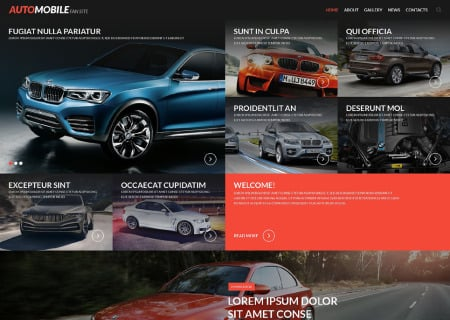 Automobile Fan Site