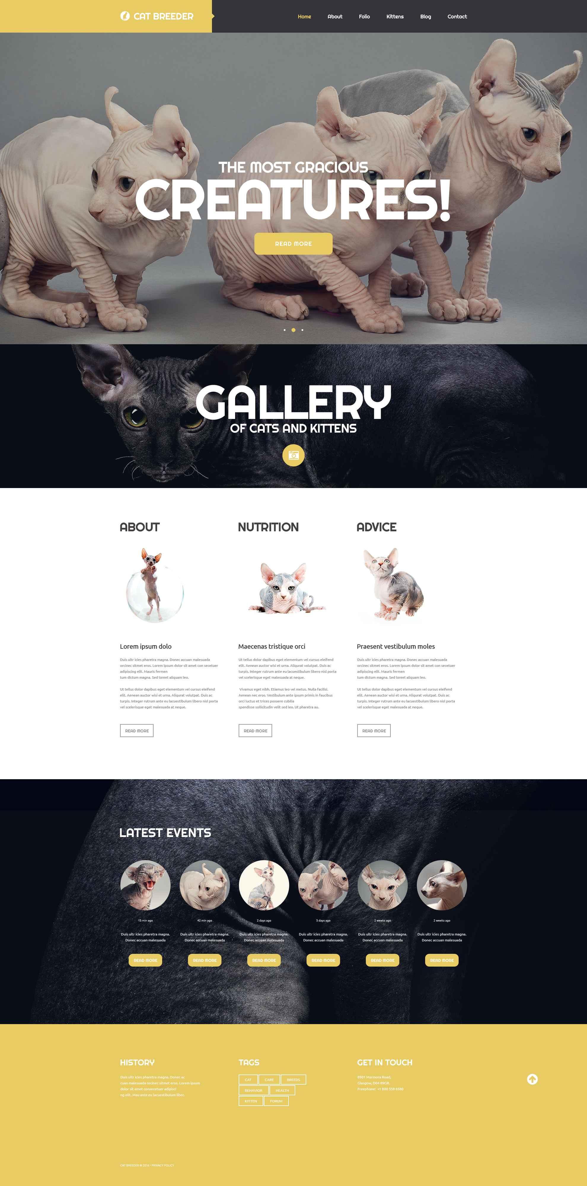 """""""Cat Breeders"""" Responsive Website template №52715 - screenshot"""