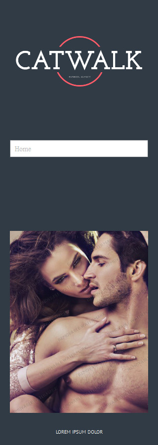 WordPress Theme/Template 52801 Main Page Screenshot