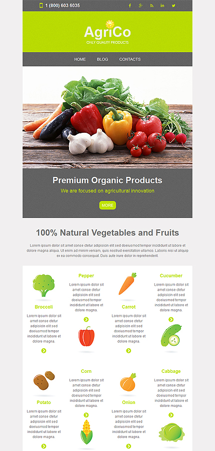 Agriculture Newsletter Template 52855 Templates Com