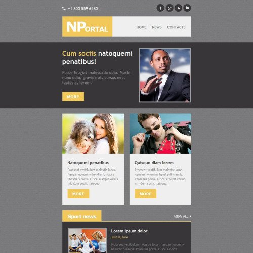 News Portal - Responsive Newsletter Template