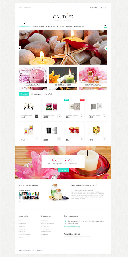 ADOBE Photoshop Template 52957 Home Page Screenshot