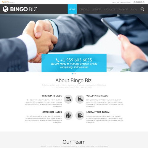 Bingo Biz - WordPress Template based on Bootstrap