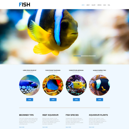 Fish - WordPress Template based on Bootstrap