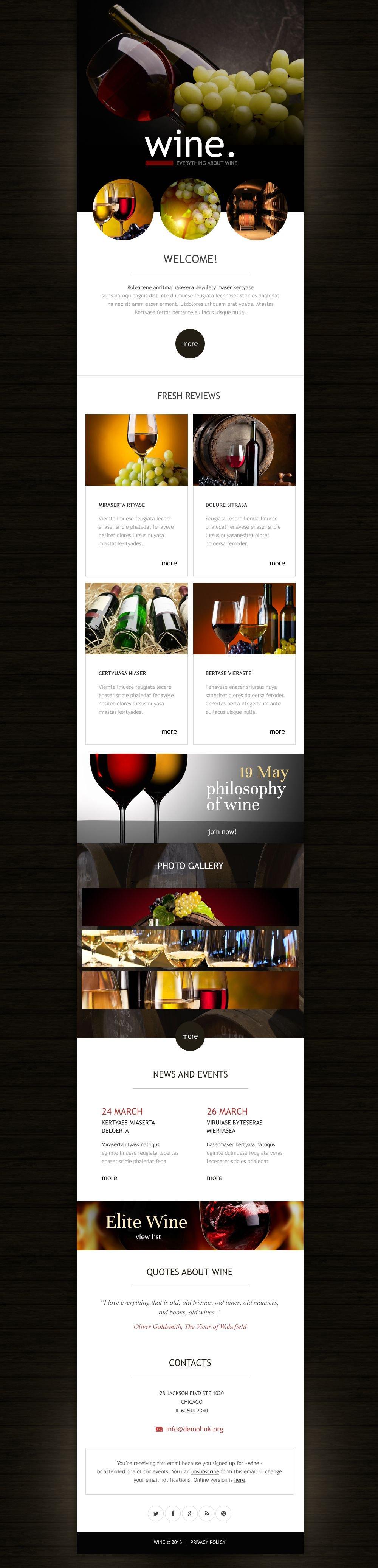 Plantilla De Boletín De Noticias Responsive para Sitio de Vino #53029