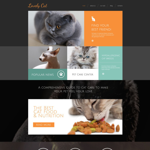 Lovely Cat - Responsive Drupal Template