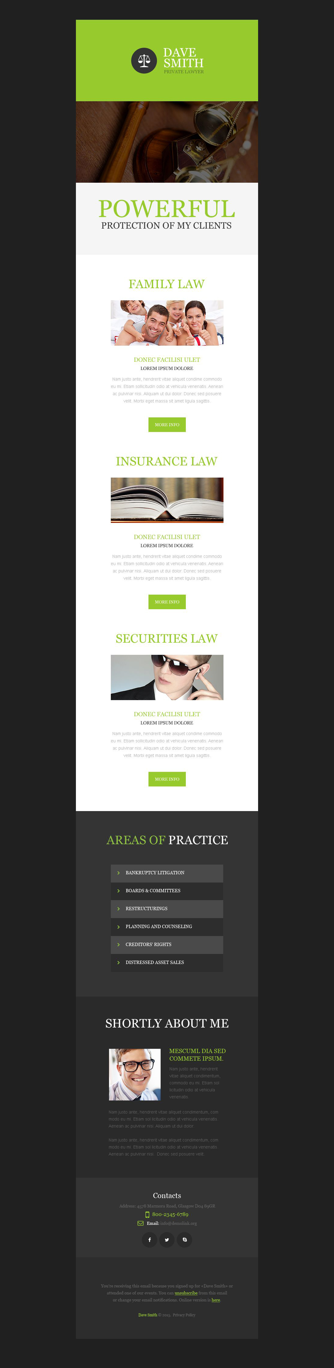 Law Firm Newsletter Template #53195