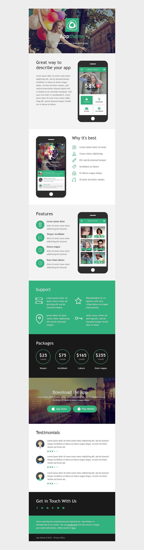 Web Development Responsive Newsletter Template New Screenshots BIG