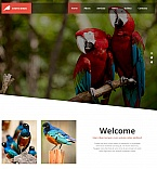 Animals & Pets Moto CMS HTML  Template 53231