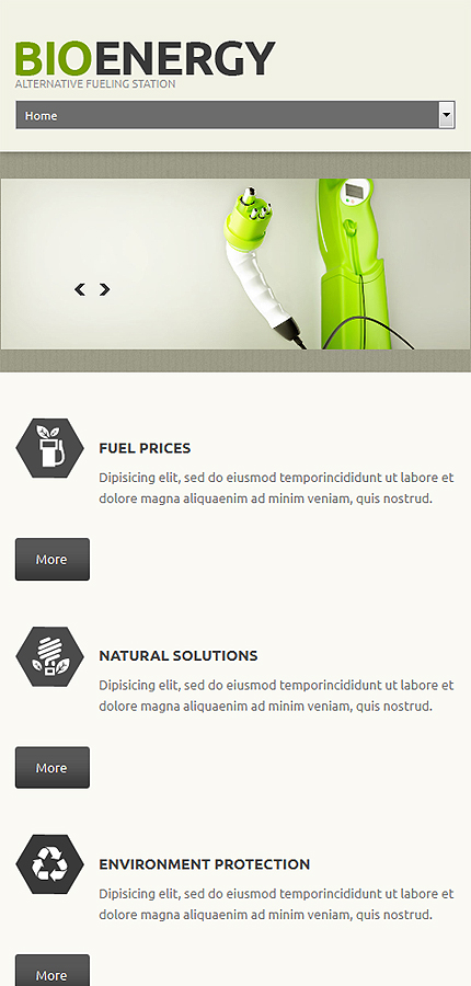 WordPress Theme/Template 53431 Main Page Screenshot