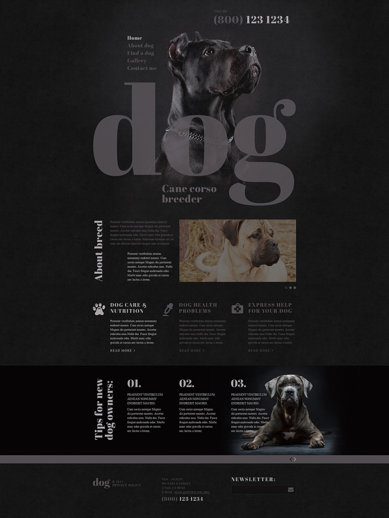 Dog Breeder Website Template New Screenshots BIG