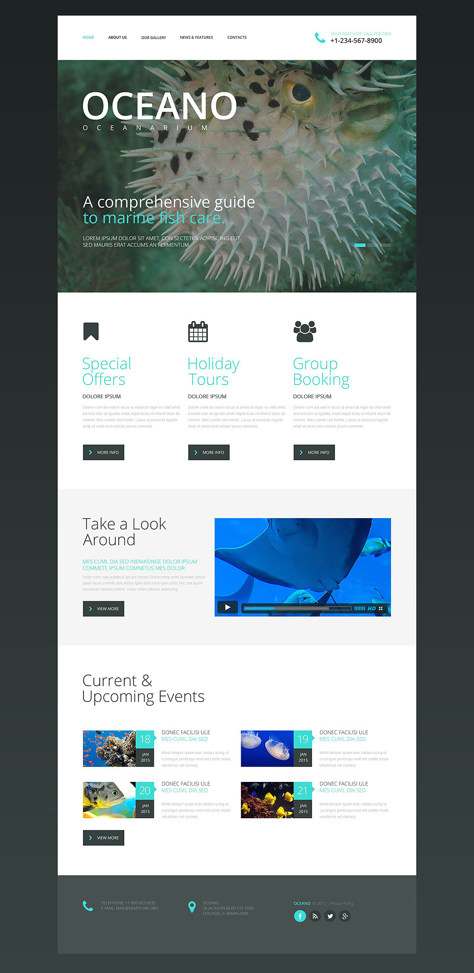 Oceanarium Website Template New Screenshots BIG