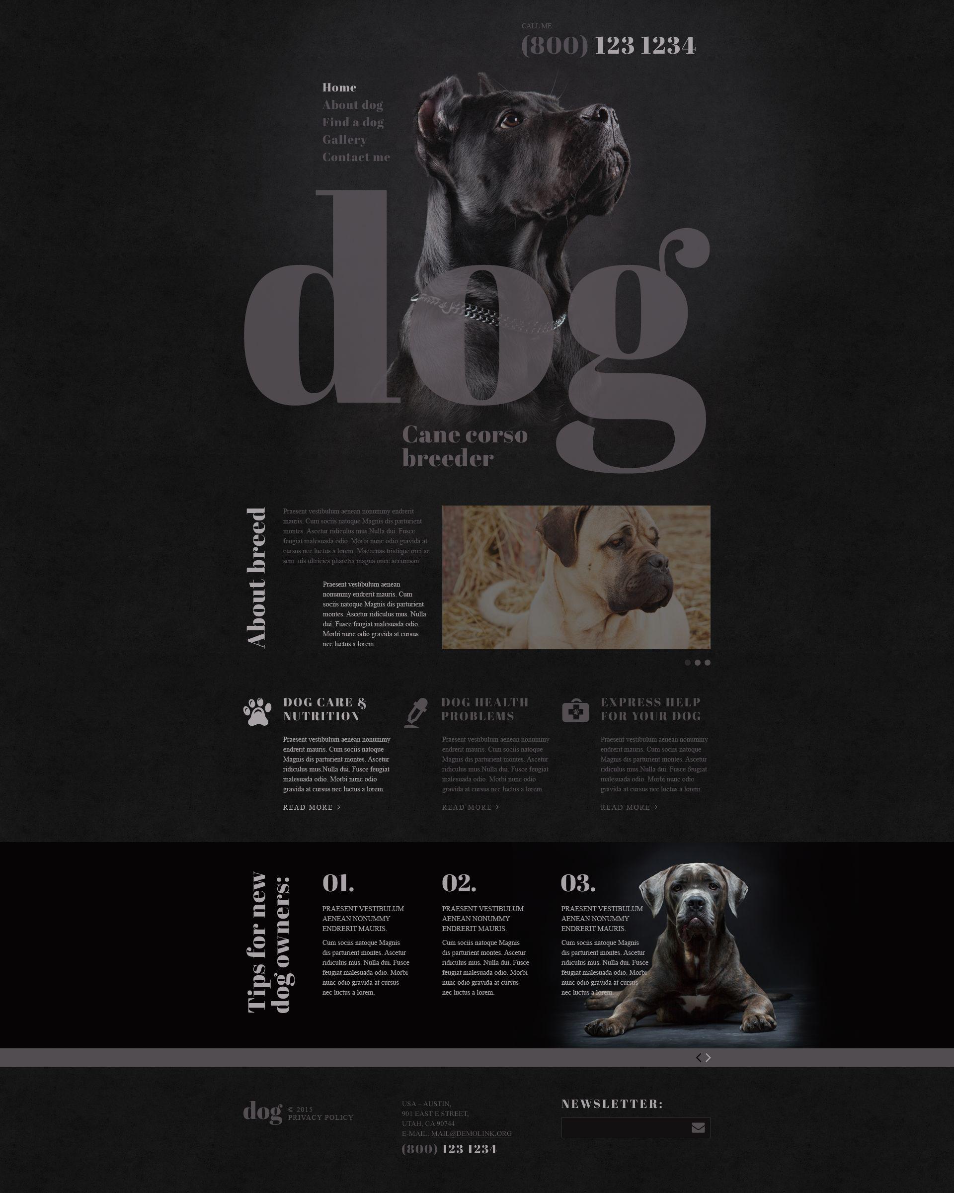 Reszponzív Dog Breeder Weboldal sablon 53411