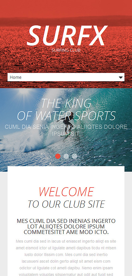 Template #53535 Surfing Club Responsive Template - Smartphone Layout 1