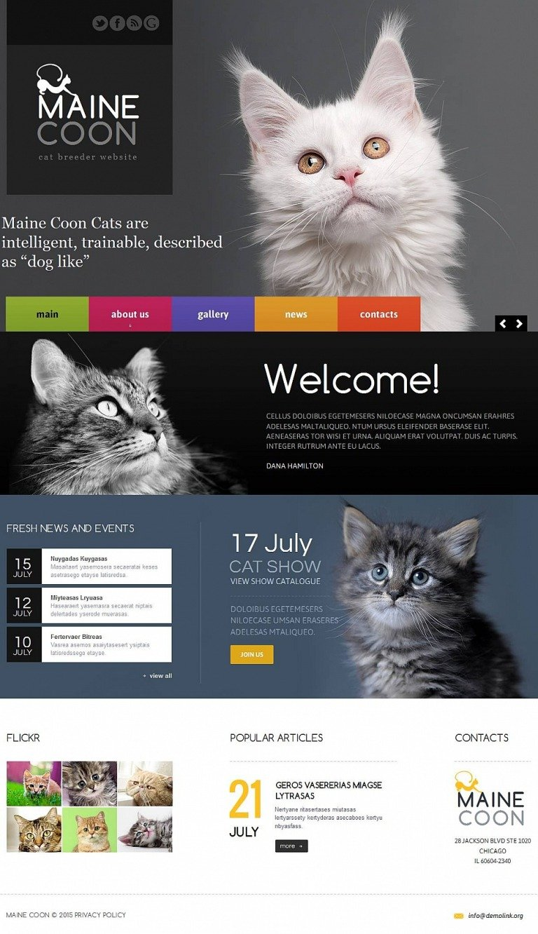 Cat Moto CMS HTML Template New Screenshots BIG