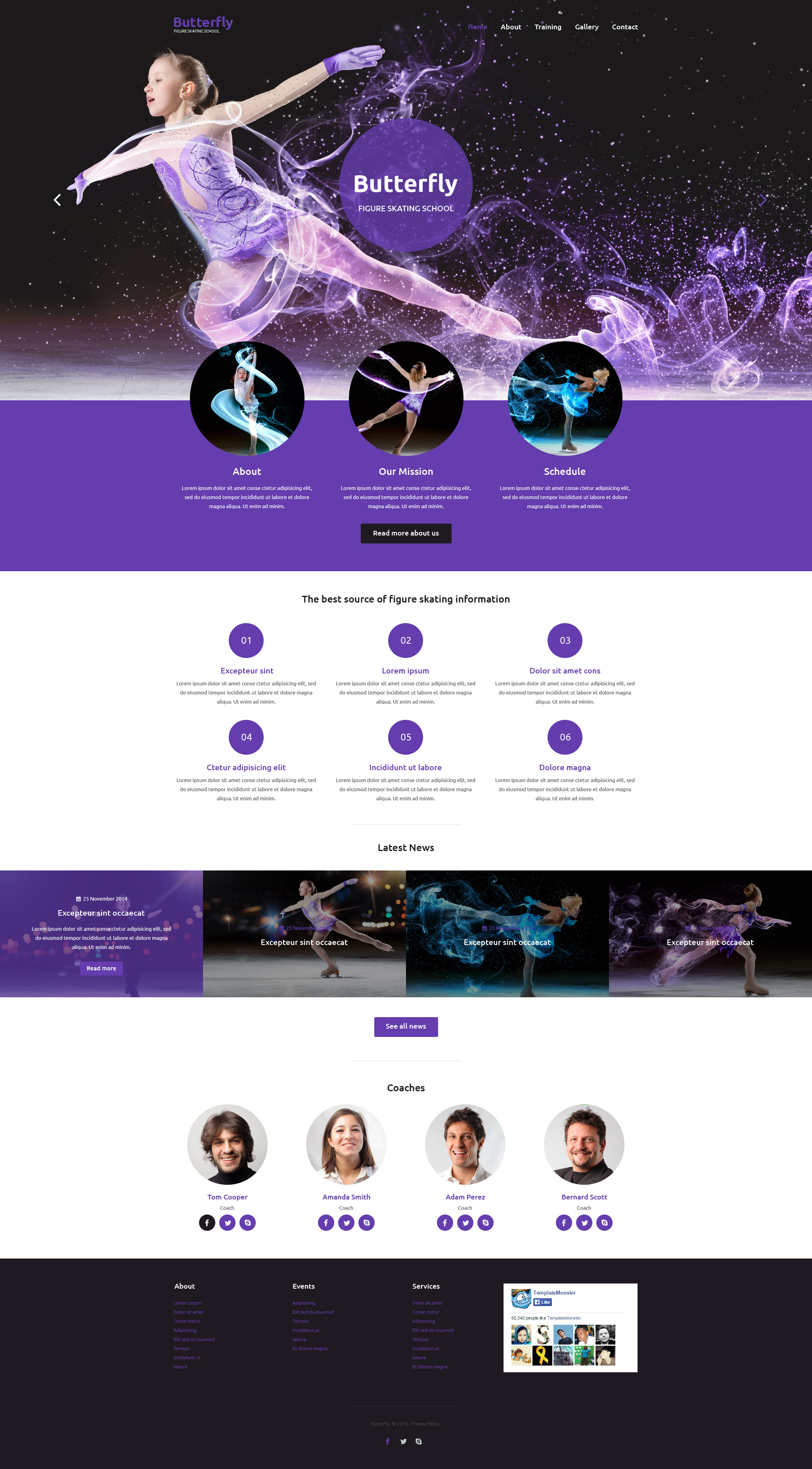 figure skating web template