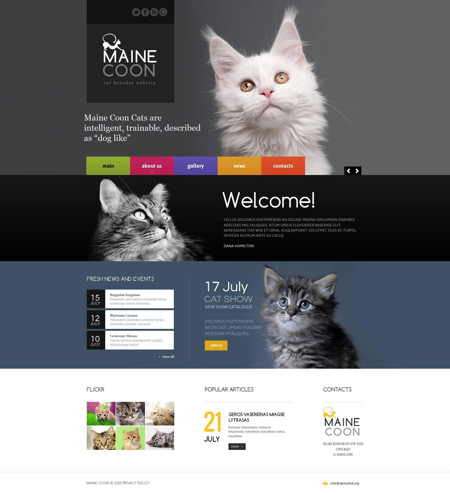 Modèle HTML Cat Moto CMS