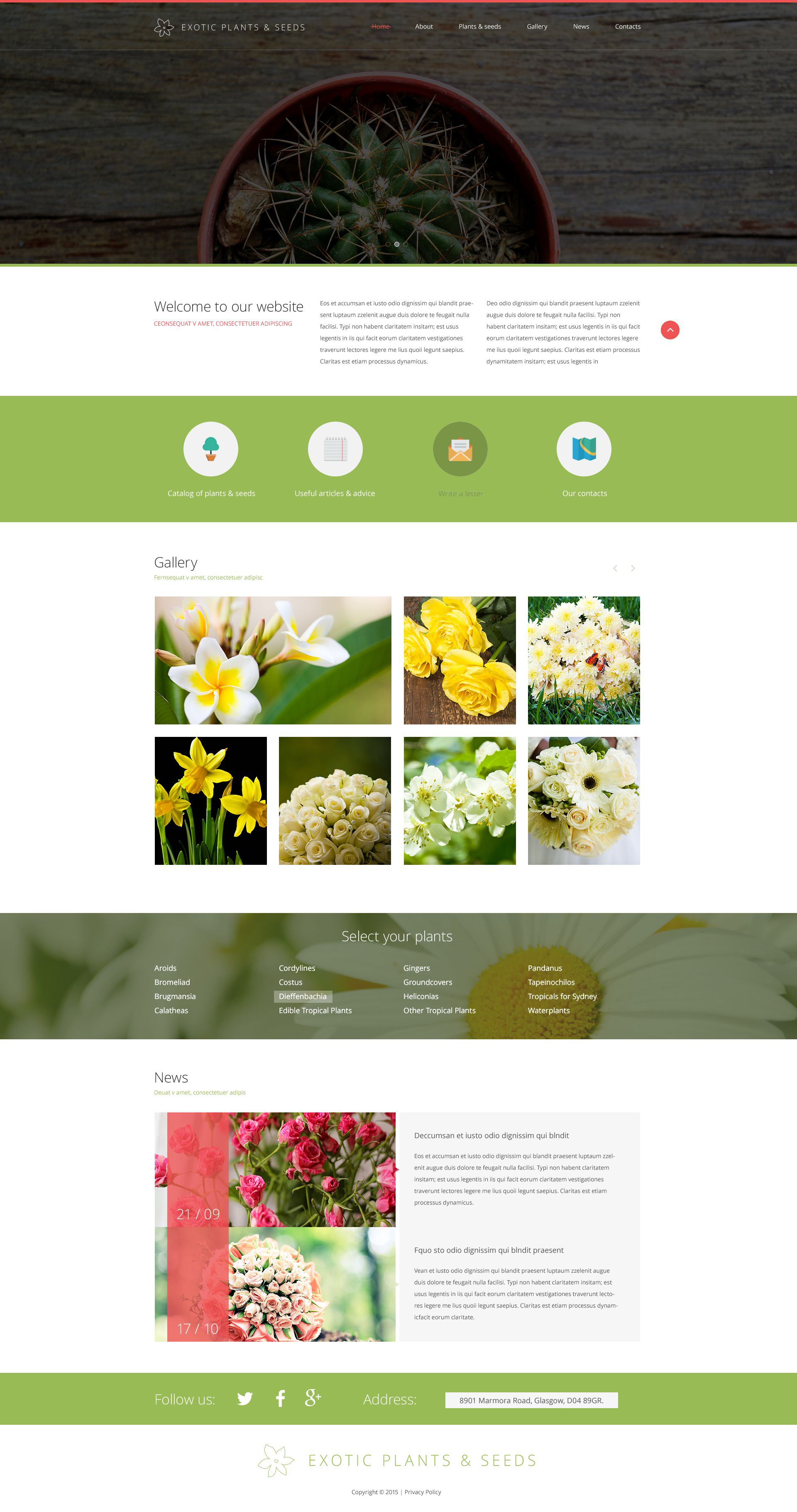 The Exotic Plants Seeds Garden Responsive Javascript Animated Design 53648, one of the best website templates of its kind (exterior design, most popular), also known as Exotic Plants Seeds garden website template, pont design website template, garden website template, exterior website template, landscape design website template, grass website template, clipper website template, lawn-mover website template, grass-cutter website template, lawn website template, garden website template, herb website template, shrub website template, tree website template, palm website template, planting website template, bamboo website template, fern company website template, profile website template, testimonials website template, education website template, work website template, team website template, staff website template, services website template, commercial website template, clients website template, residential website template, special technologies and related with Exotic Plants Seeds garden, pont design, garden, exterior, landscape design, grass, clipper, lawn-mover, grass-cutter, lawn, garden, herb, shrub, tree, palm, planting, bamboo, fern company, profile, testimonials, education, work, team, staff, services, commercial, clients, residential, special technologies, etc.