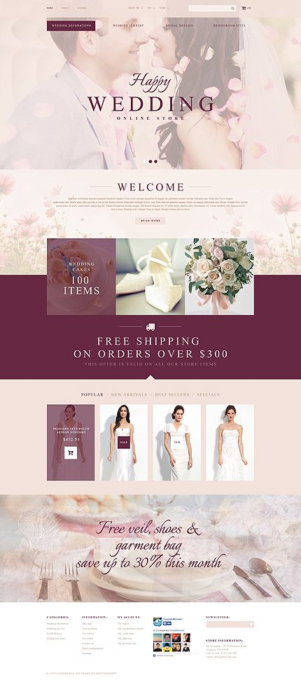 ADOBE Photoshop Template 53721 Home Page Screenshot