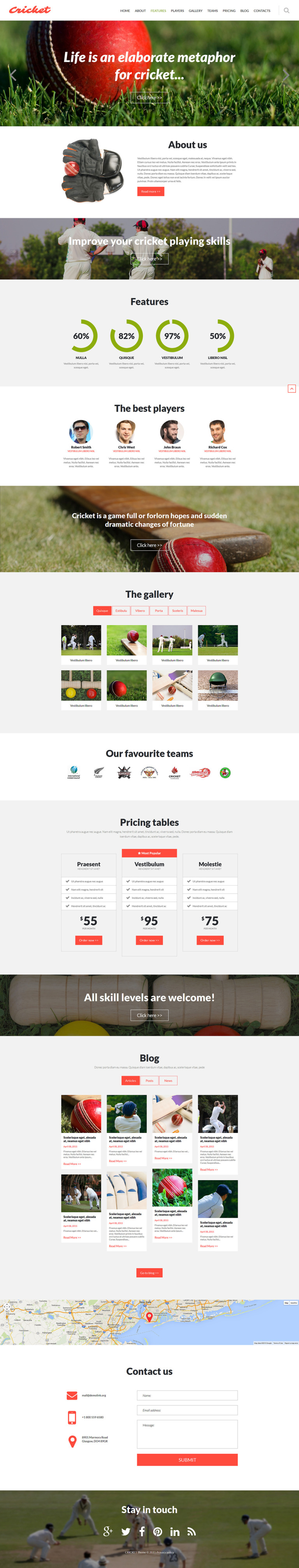 Cricket Club Joomla Template New Screenshots BIG