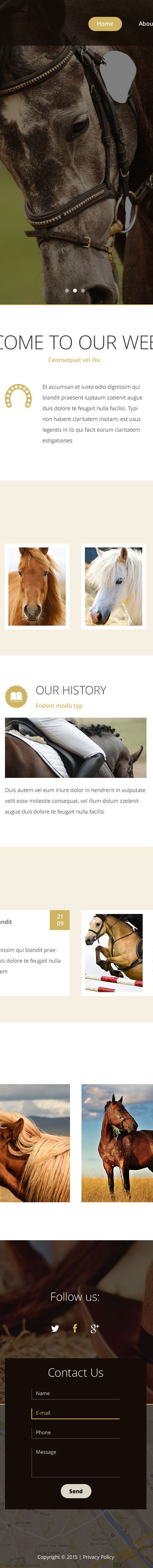 Horse Breeder Website Template