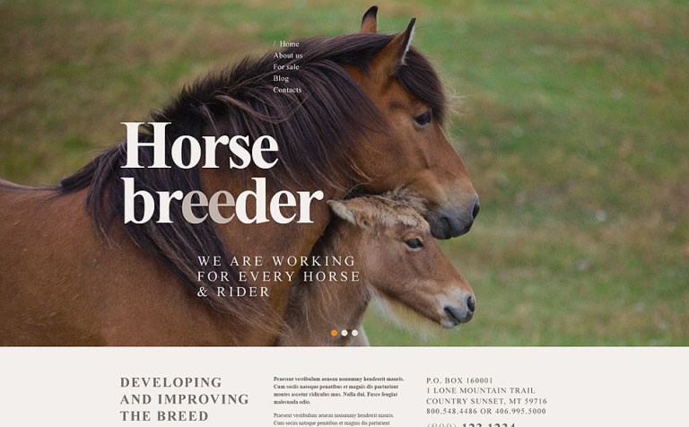Horse Breeder WordPress Theme