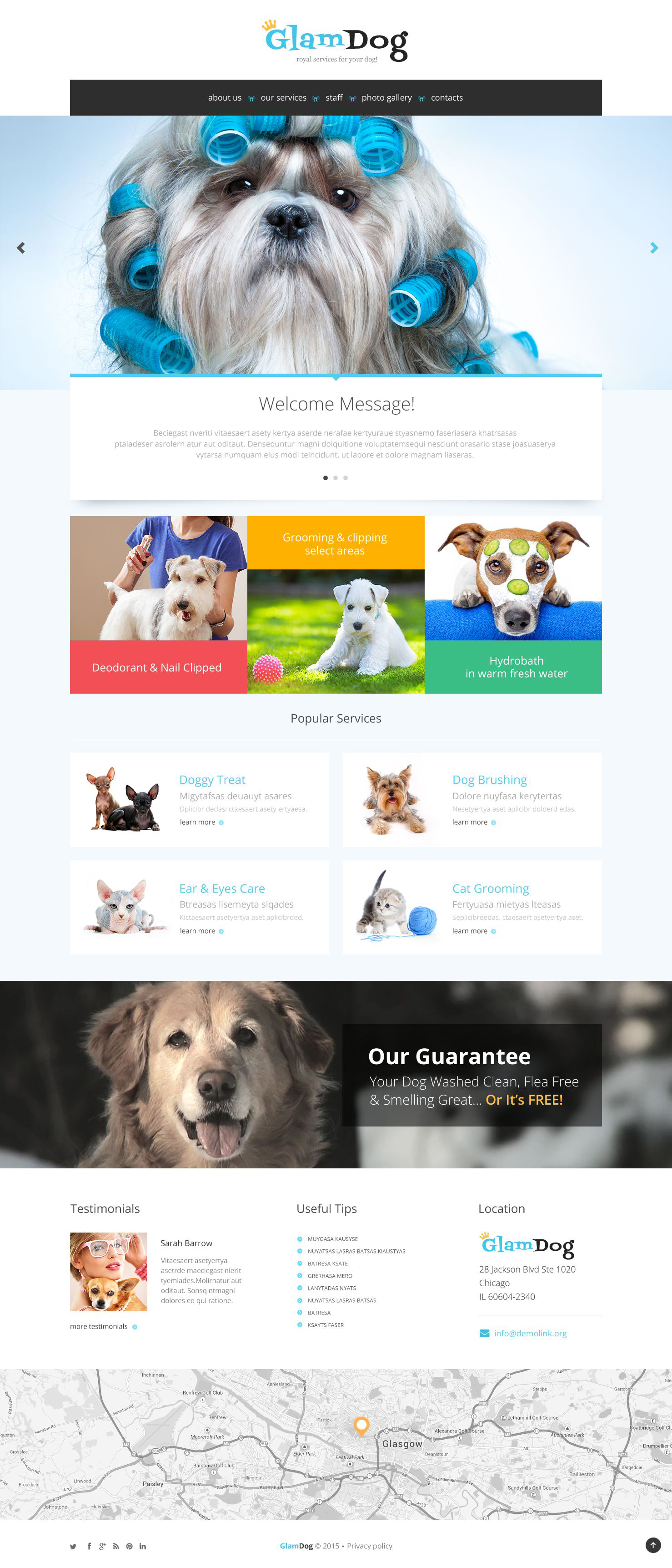 Reszponzív Dog Grooming Weboldal sablon 53778
