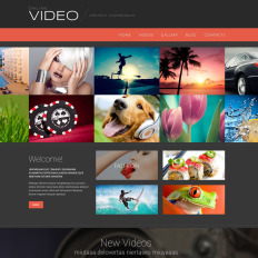 Bootstrap WordPress Video Gallery Themes
