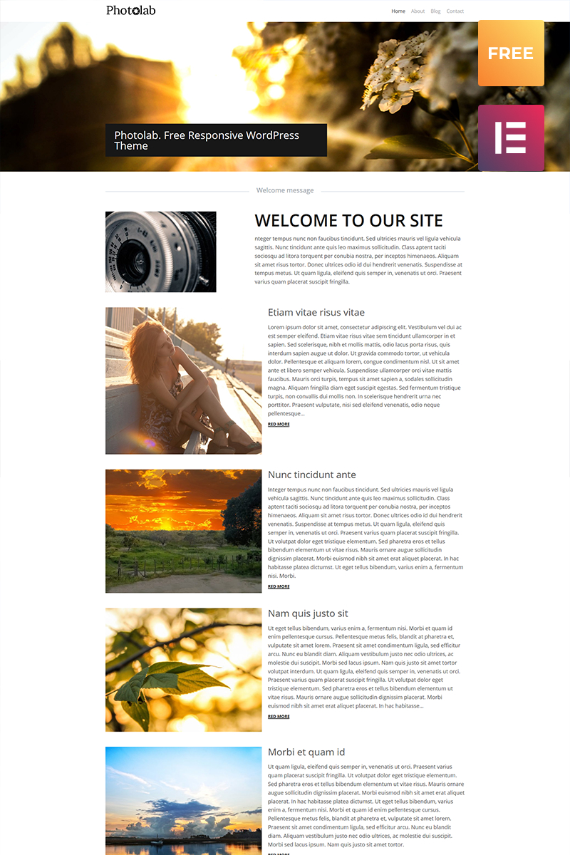 Адаптивный WordPress шаблон №53920 на тему фотомагазин