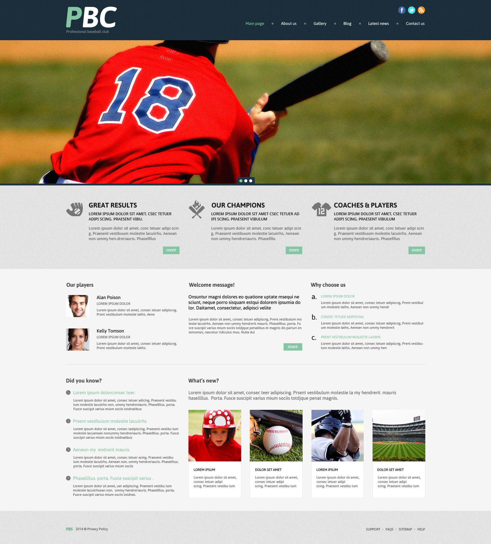 Responsives WordPress Theme für Baseball #53996