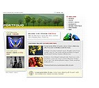 Flash: Art & Photography Flash Site