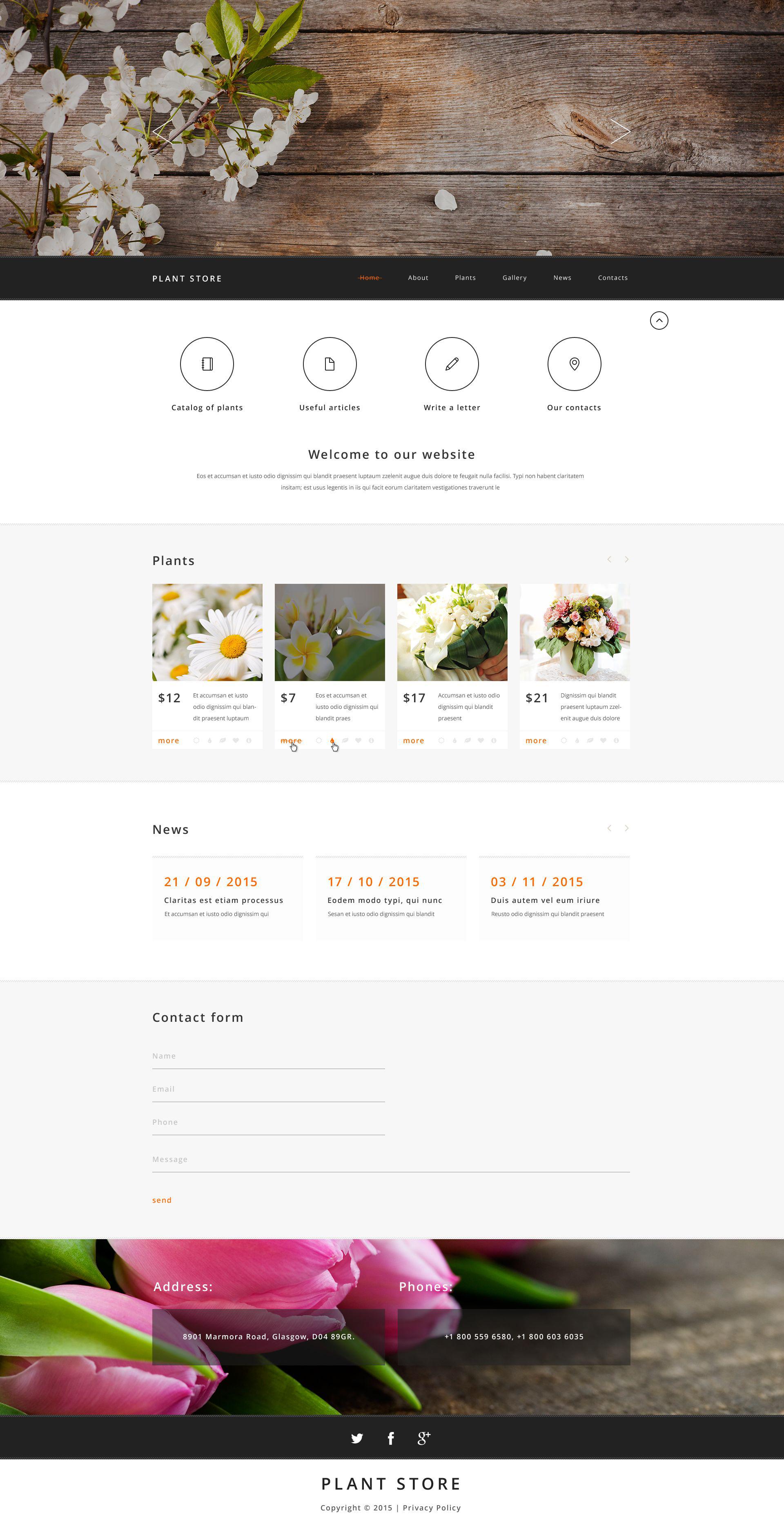 """""""Plant Store"""" modèle web adaptatif #54020"""
