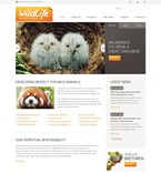 Animals & Pets PSD  Template 54158