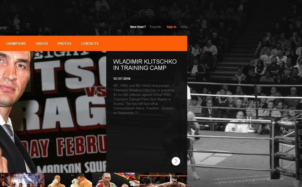 PSD шаблон №54324 на тему  о боксе New Screenshots BIG
