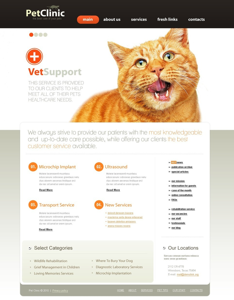 Vet PSD Template New Screenshots BIG