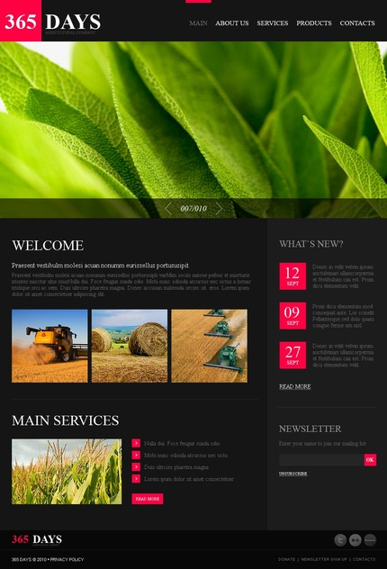 PSD макет сайта №54417