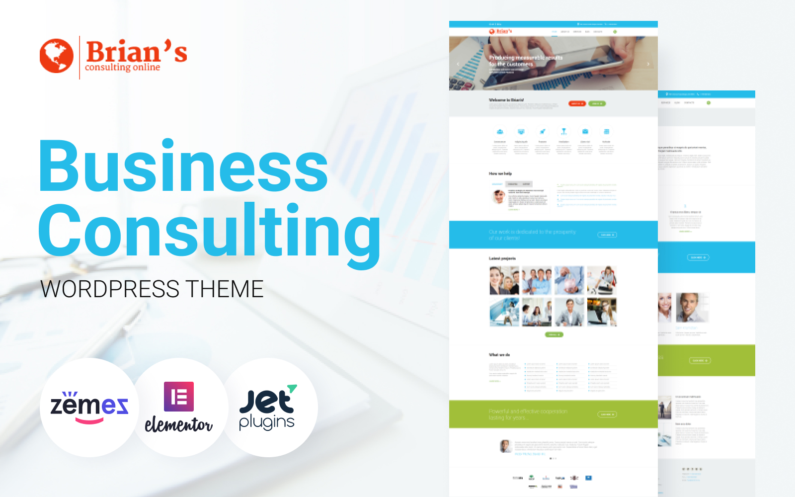 Brian's - Consulting Multipurpose Classic Elementor WordPress Theme