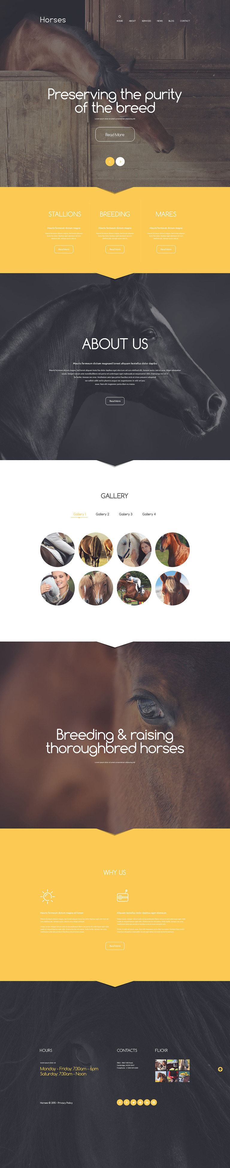 Stud Farm Drupal Template New Screenshots BIG