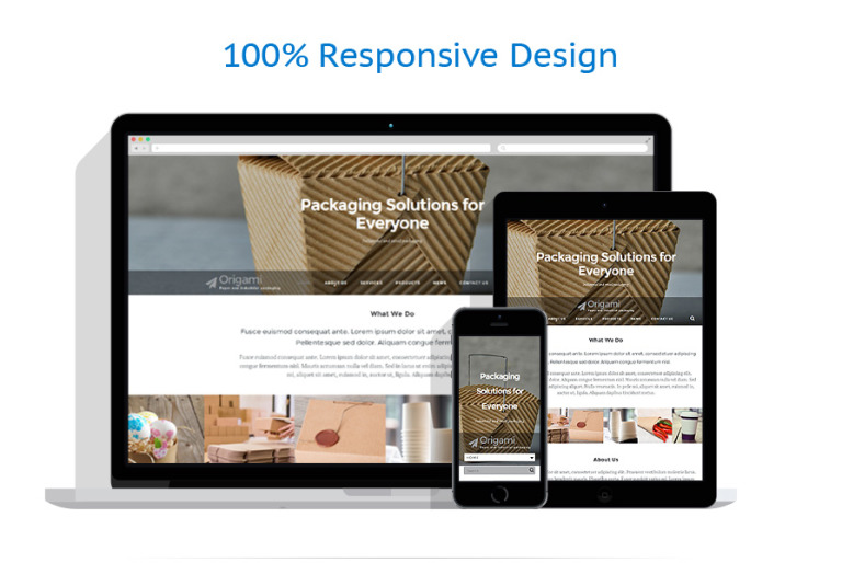 Packaging website template a professionally designed business website is important as it gives the first impression about your company this packaging website template can be a good pronofoot35fo Choice Image