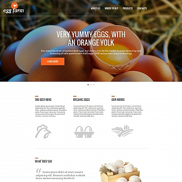 Купить  пофессиональные Moto CMS HTML шаблоны. Купить шаблон #54757 и создать сайт.